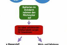 Infographics / Infografiken von foodnav.de