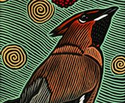 woodcuts, linocuts, lithographs, intaglio