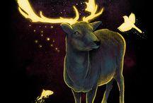 Deer / by Becky Chelette McCoy