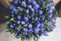Bouquets de mariées / Découvrez nos plus beaux bouquets de mariées !