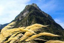 travels: Polynesia
