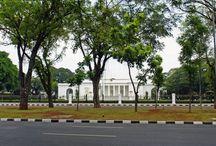 3 Jenis Burung yang Tinggal di Istana Kepresidenan Jakarta