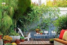 mijn toekomstige tuin