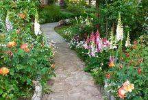 caminos jardin