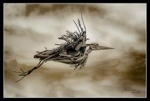Driftwoodz