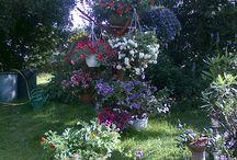 květinové zahrady a dekorace