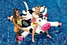 Best pool toys / Our favorite inflatable pool toys! Pool Loungers, Pool floats, Pool Games, Pool Toys Australia and Home and Outdoor products have the best range at the best prices.