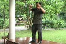 VIDEOS DE CHI KUNG EXERCISE