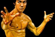 kung‑fu‑fever