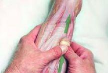 Massage - Healing