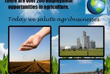 National Ag Day / National Ag Day is a day to recognize and celebrate those involved in the agriculture industry. Agriculture provides so many career opportunities, from food science to farm production to education.