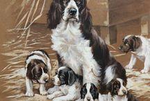 собаки в рисунках
