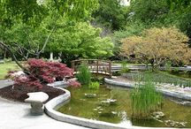 Arboretums & Botanical Gardens / Great places for plant lovers to visit...