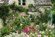 zahrada na chatě