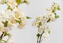 Ветки сакуры и вишни искусственной. Sakura and cherry blossom artificial. / Вишня Сакура ветки искусственные - Ветки сакуры и вишни искусственной в ассортименте