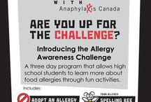 Allergy Awareness Challenge  / A board of resources from our allergy awareness program for high schools.