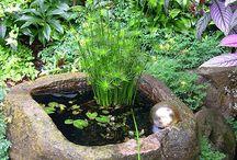 Jardins De Água