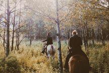 Осень / Я так хочу вернуться в мой май, но только наступила осень...
