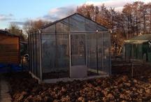 Garden  / Our first vegetable garden in 'de vrije tuinder,' Dordrecht, Netherlands.