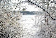 La Champagne-Ardenne sous la neige / Enneigé, le Parc Naturel Régional de la Forêt d'Orient a toujours un charme magique ! (photos de l'hiver 2012)