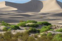 Death Valley National Park / Fun places to go in Death Valley National Park with kids / by Travel for Kids