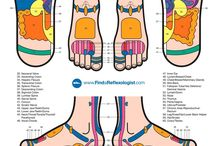 Reflexology / A pressure therapy technique focusing on the reflex points in your feet.