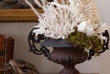 Coral home decor, costal living