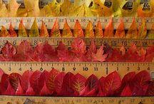 Autumn Inspiration / by EziBuy
