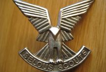 zuid africa wings en insignes