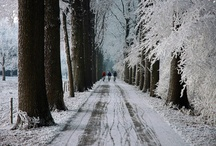 did I forget to tell you, I LOVE WINTER! / by Kathy Spriggs