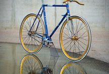 Bicy Art / Sexy Bicycle
