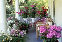 Beautiful Front & Back Porches