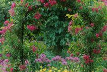 Gardens....Victorian