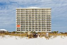 Featured Listings / Our Featured Collection in the Orange Beach/Gulf Shores Area