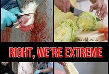 Against animal cruelty!