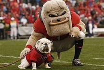How a bout them Dawgs / by Haley Putman