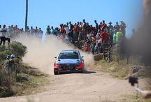 Rally Mundial 2016, Córdoba