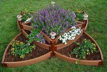 Gardening for Butterflies / Ideas for creating a butterfly garden.