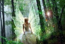 Fairies  / by Stacey Siscoe