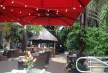 LimeTree Lounge / Restaurant & lounge