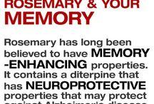 Memory & Eyesight