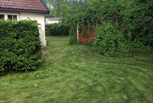 Rehabilitering av hagen på Nøtterøy 2017 / Mammas gamle hage skal rehabiliteres. Vi skal bygge orangeri på 28 m2, med gulvvarme og vinterisolert. Vi skal anlegge cottage garden i en del av hagen.