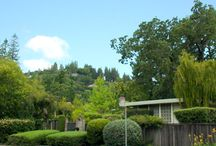 Kentfield / Kentfield is a quiet, residential town at the base of Mount Tamalpais. It is definitely a nice, serene place to live in Marin County. Most of the homes are surrounded by trees. Kentfield is also very close to both Greenbrae and Corte Madera.