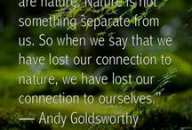 Environmental Art / All things green and beautiful