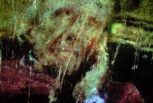Deleuze / « C'est seulement au sein du visage, du fond de son trou noir et sur son mur blanc, qu'on pourra libérer les traits de visagéité, comme des oiseaux, non pas revenir à une tête primitive, mais inventer les combinaisons où ces traits se connectent à des traits de paysagéité, eux-mêmes libérés du paysage, à des traits de picturalité, de musicalité, eux-mêmes libérés de leurs codes respectifs. » Mille Plateaux, G #Deleuze - F #Guattari