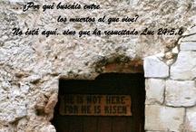 Gospel according to Luke / by Vicky Pratt
