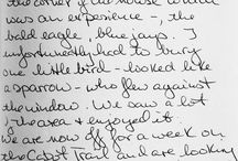 Reviews / what our guests write...