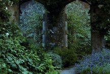 MEDUSA GORGONA zahrada