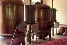 Atelier parfumerie