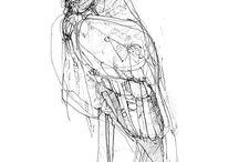 Sketch/Drawing